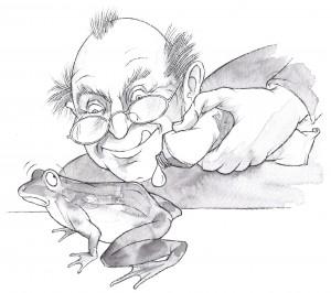 Cartoon of a man oiling an actual frog (animal)