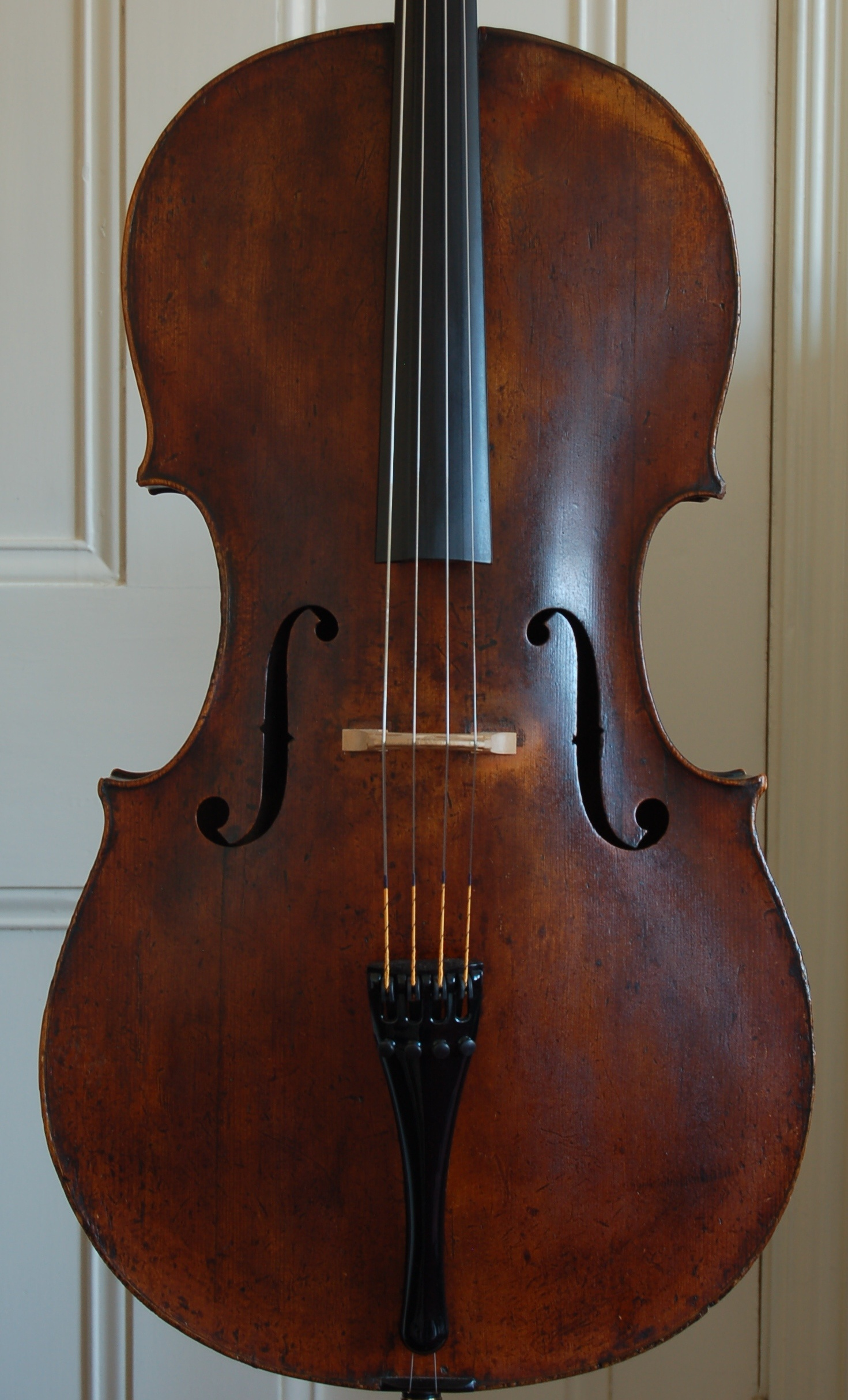 Fine German cello front